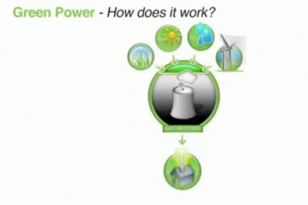 Green-Power---First-National-Real-Estate