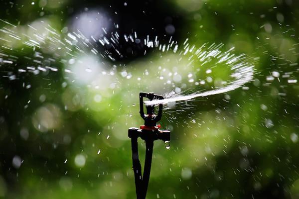 pesky-summer-home-maintenance-tasks-made-easy
