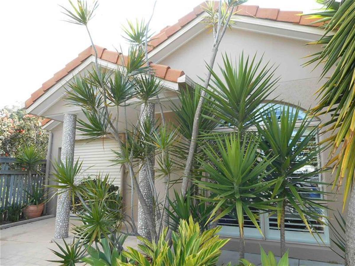 4-pinehurst-street-currimundi-4551-qld